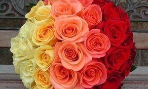 Скидки до 50% на букеты и композиции из живых цветов. Получите купон бесплатно.